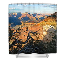 Grand Canyon South Rim - Sunset Through Trees Shower Curtain