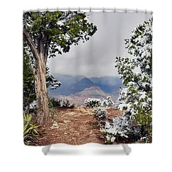 Grand Canyon Through The Trees Shower Curtain