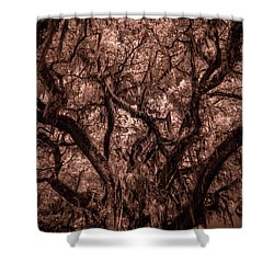Shower Curtain featuring the photograph Grand Daddy Oak Tree In Infrared by Louis Ferreira