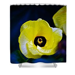 Shower Curtain featuring the photograph Grand Opening by Debbie Karnes