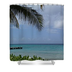 Grand Turk Shower Curtain by Lois Lepisto