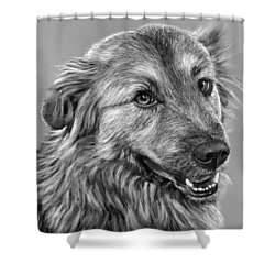 Granddog Kuper Shower Curtain