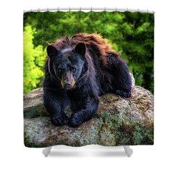 Grandfather Mountain Black Bear Shower Curtain
