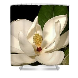Grandiflora Shower Curtain
