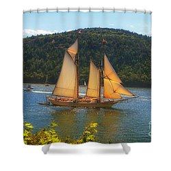 Grandiose  Shower Curtain by Elizabeth Dow