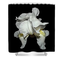Grandma's White Iris Shower Curtain