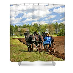 Shower Curtain featuring the painting Grandpa And His Team Of Horses At Old World Wisconsin by Christopher Arndt