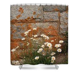 Granite Daisies Shower Curtain