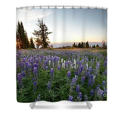 Granite Mountains Sunrise Shower Curtain