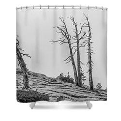 Granite Staitcase Shower Curtain