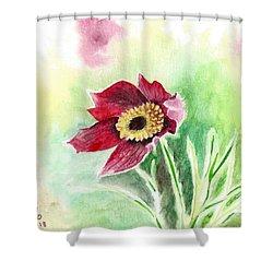Granny Flower 2 Shower Curtain