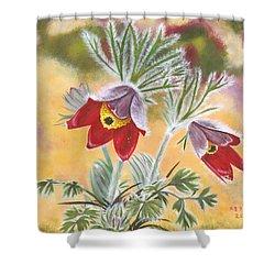 Granny Flowers Shower Curtain