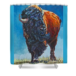 Grant Shower Curtain