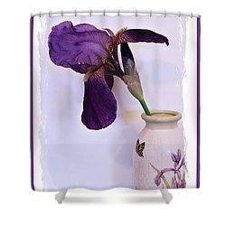 Grape Iris In A Vase Shower Curtain