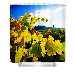 Grape Leaves And The Sky Shower Curtain by Elaine Plesser