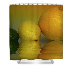 Shower Curtain featuring the photograph Grapefruit Lemon And Lime Citrus Fruit by David French
