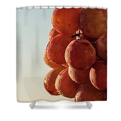 Grapes Cluster Shower Curtain
