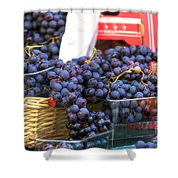Grapes In Paris Shower Curtain by John Rizzuto