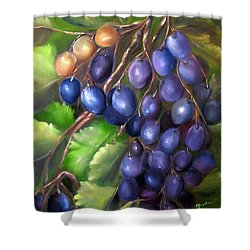 Grapevine Shower Curtain by Carol Sweetwood