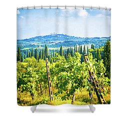 Shower Curtain featuring the photograph Grapevine In San Gimignano Tuscany by Silvia Ganora