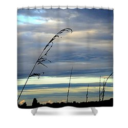 Grass Against Abstract Sky Shower Curtain