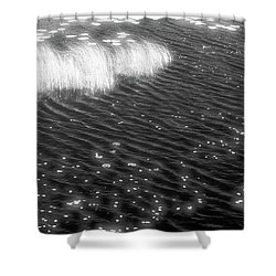 Grass And Water And Lilly Pads Bw2  Shower Curtain by Lyle Crump