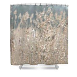 Shower Curtain featuring the photograph Grass  by Gary Bridger