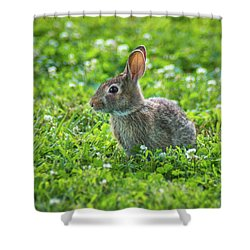 Shower Curtain featuring the photograph Grass Hoppers by Bill Pevlor