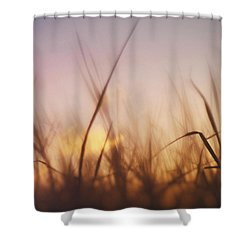 Grass In A Windy Field Shower Curtain