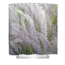 Shower Curtain featuring the photograph Grass Is More - Nature In Purple And Green by Ben and Raisa Gertsberg