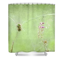 Grasses And Blooms Shower Curtain