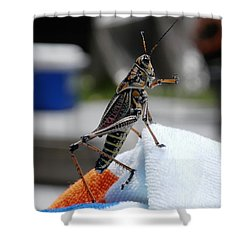 Dancing Grasshopper At The Pool Shower Curtain