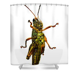 Grasshopper II Shower Curtain by Gary Adkins