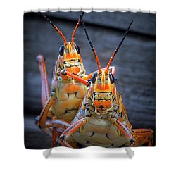 Grasshoppers In Love Shower Curtain