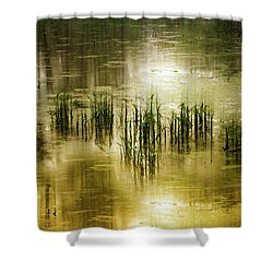 Shower Curtain featuring the photograph Grassland Abstract by Jessica Jenney