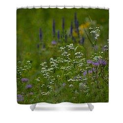 Grassland Summer Shower Curtain by Tim Good
