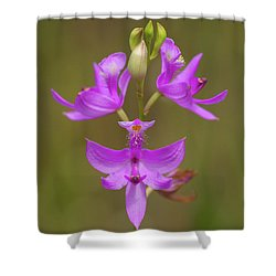 Grasspink #1 Shower Curtain