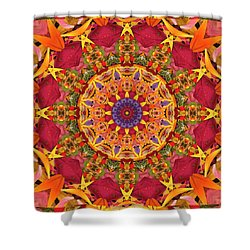 Gratitude Shower Curtain by Bell And Todd