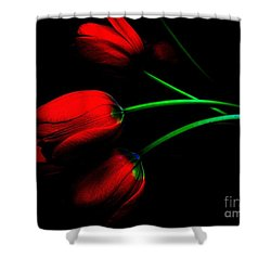 Gratitude Shower Curtain by Elfriede Fulda