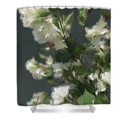 Gray Floral 09 Shower Curtain