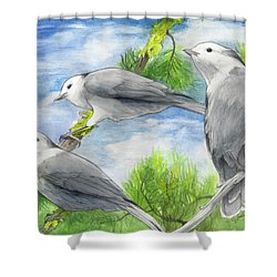Gray Jays Trio Shower Curtain