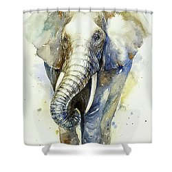 Gray Knight Shower Curtain