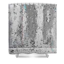 Gray Matters 4 Shower Curtain