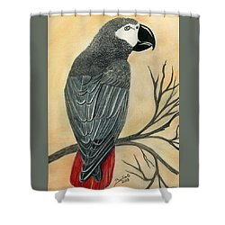 Gray Parrot Shower Curtain