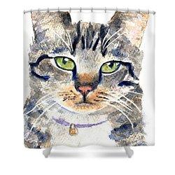 Gray Tabby Cat Watercolor Shower Curtain