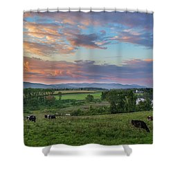 Grazing At Sunset Shower Curtain