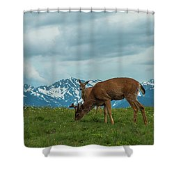 Grazing In The Clouds Shower Curtain