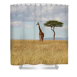 Grazing Giraffe Shower Curtain