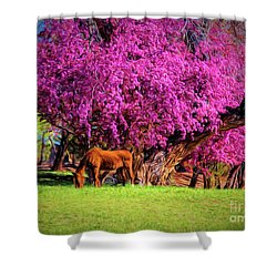 Grazing Horse  ... Shower Curtain