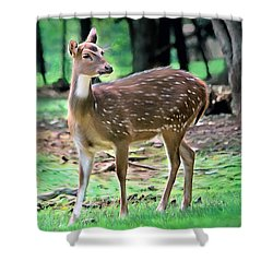Shower Curtain featuring the photograph Grazing by Marion Johnson